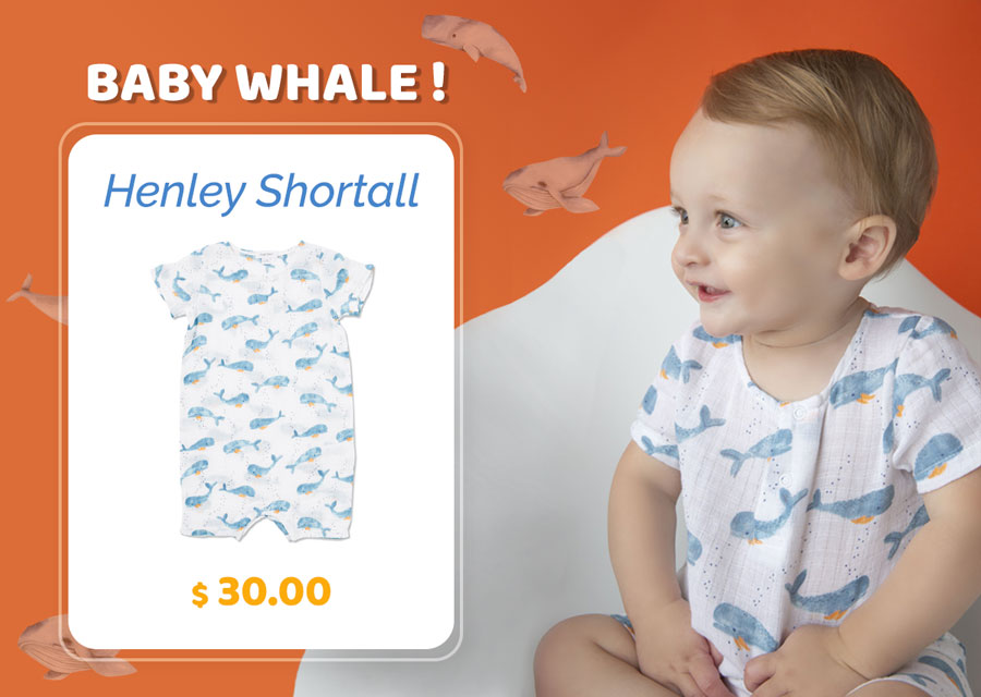 Baby Whale Shortall Featured